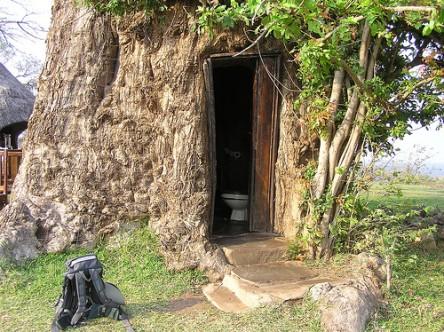 baobab-toilet